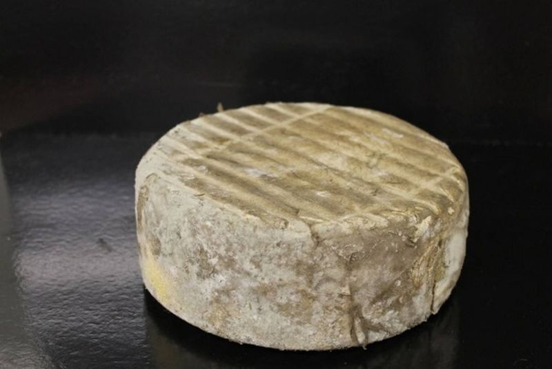 tomme_lozere.jpg